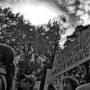 demonstracja-ratujmy-kobiety-2016_13